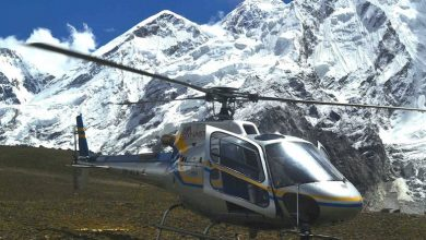 Photo of Air Dynasty Heli Service